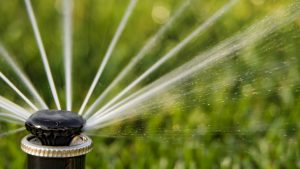Properly Flush and Install a New Sprinkler Nozzle