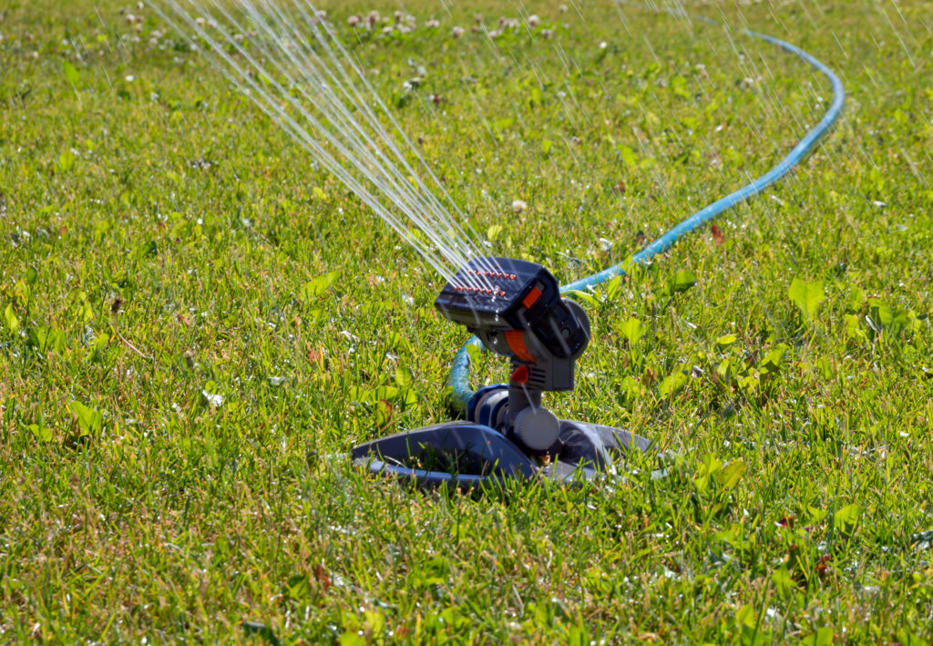 Get Rid of Standing Water in Your Yard